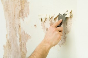Lookout Mountain wallpaper removal information